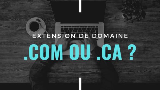 Extensions de domaines internet